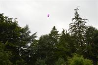 location marker balloon