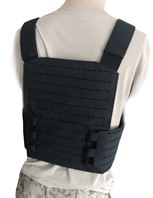 plate_carrier_back